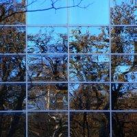 Осень в  окне.... :: Валерия  Полещикова