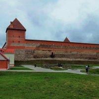 Замок в городе Лида.(Беларусь) :: Лара ***