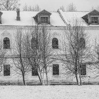 Зимняя тишина :: Сусанна Галоян
