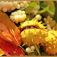 Осенний натюрморт :: Лидия (naum.lidiya)
