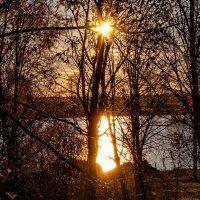 Лучи от солнца прорывались... :: Анатолий Клепешнёв