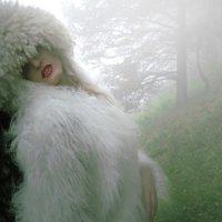 Fog :: Liana Klevcova