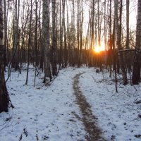 Вариации на тему солнца :: Андрей Лукьянов