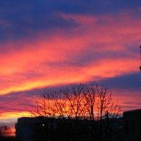 Красивый закат в Измаиле,Украина :: Жанна Романова