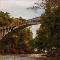 мост :: svabboy photo
