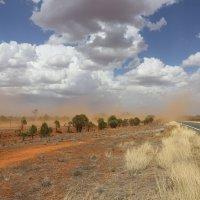 Песчаная буря в пустыне Австралии :: Антонина