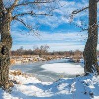 У замёрзшего озера :: Любовь Потеряхина
