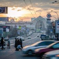 Суета сует... :: Сергей Офицер
