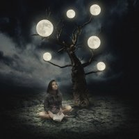 лунное дерево :: Юлия Зырянова