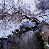 Не замерзающий ручей :: Zifa Dimitrieva