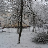Первый снег :: Александр Атаулин