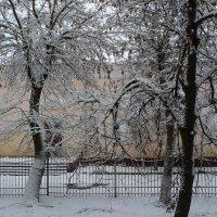 Первый снег2. :: Александр Атаулин