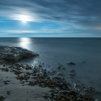 Под лунным светом :: Виталий Кийко