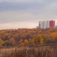 Осень на окраине Москвы :: Виктор Мальгин