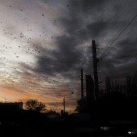 закатное :: Николай Семёнов