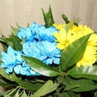 Цветы :: Ольга)