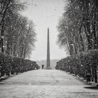 Снежно... :: Сергей Офицер