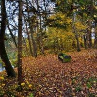 Однажды осенью ... :: Владимир Икомацких