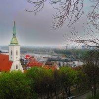 Туманное утро в Братиславе :: M Marikfoto