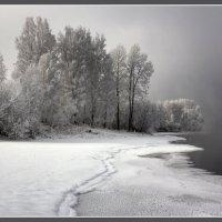 Морозная безмятежность :: Maxim Agafonoff