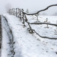 "...ноябрь...(из альбома ""the country of fog""...) :: Александр Герасенков"