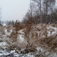 30 ноября :: Юрий Бондер