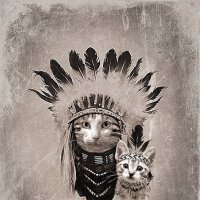 Мудрый Филин и его младший брат Соня Царапка. 1882 год, штат Айдахо :: Дмитрий