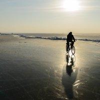 Под зимним солнцем :: Александр Шведов