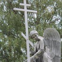Памятник роду Васнецовых :: Любовь