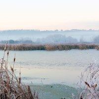 Утро, туман, рассвет.. :: Юрий Стародубцев