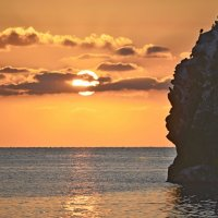 Про бакланов и солнце на восходе... :: Юрий Цыплятников