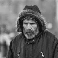 Жанровый портрет #19 :: Александр Степовой