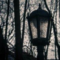 День, парк, фонарь... :: Игорь Овсянников