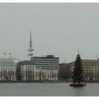 Рождественская ель на озере Альстер :: Nina Yudicheva