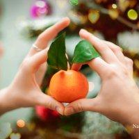 В ожидании нового года ! :: Наталья