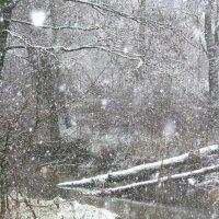 пейзаж начала зимы :: Александр Прокудин