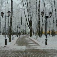 В город пришла зима :: Милешкин Владимир Алексеевич