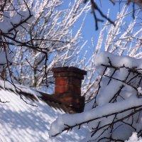 Снег выпал ... :: Svetlana Baglai
