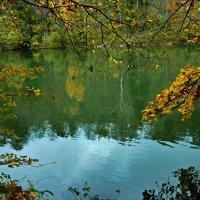 Над водой склоненные ... :: Владимир Икомацких