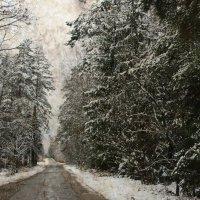 Зимняя дорога :: AstaA
