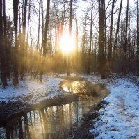 За день до зимы :: Андрей Лукьянов