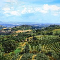 Тосканские холмы (2) :: Дмитрий .