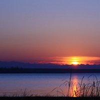 Закат в последний день осени :: Roman Arnold