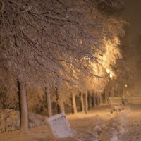 вот и пришла зима :: Римма Покачалова
