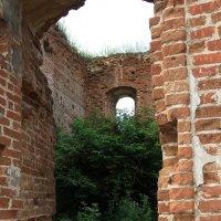 Разрушенные Храмы...  но и  там  продолжается жизнь. :: Валерия  Полещикова