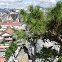 С высоты Crazy House. Вид на город Далат. Вьетнам. :: Елена Береговых