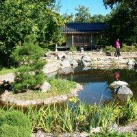 Японский уголок ботанического сада :: Виктор Елисеев
