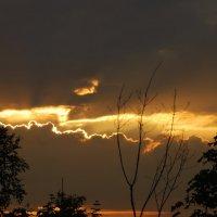 Расколотое небо :: Николай Танаев