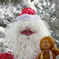 С наступающим годом обезьяны. :: nadyasilyuk Вознюк