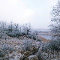 Первые морозы :: Александр Макеенков